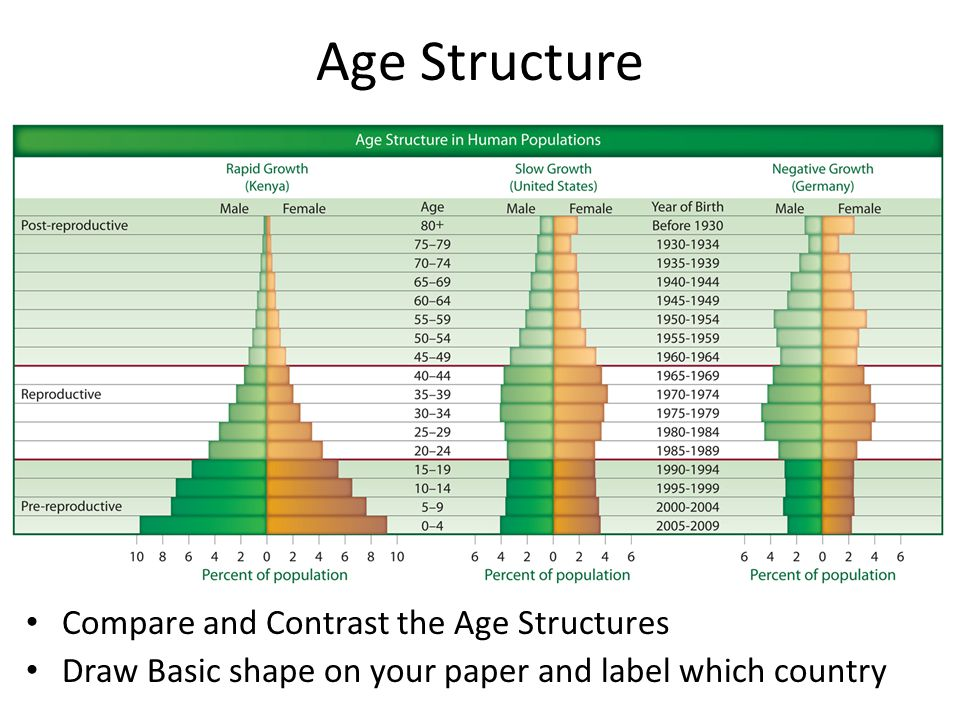 Age Structure Compare and Contrast the Age Structures