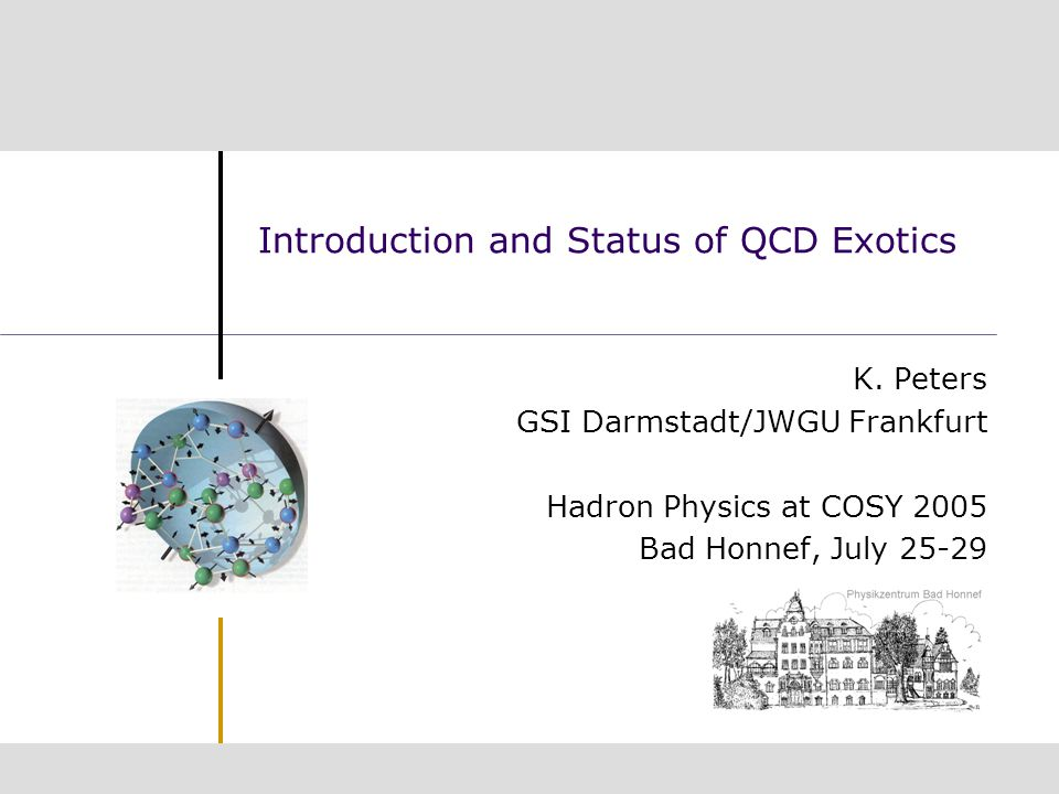 Introduction and Status of QCD Exotics