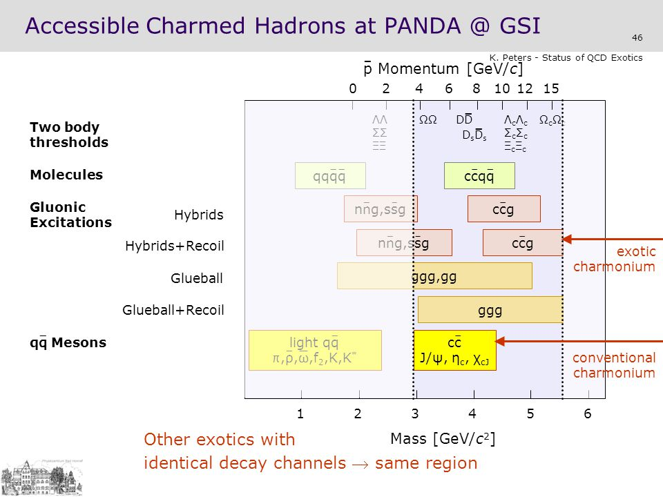 Accessible Charmed Hadrons at PANDA @ GSI
