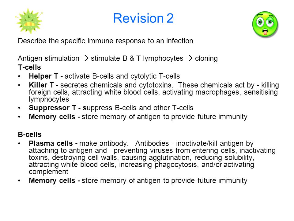 Revision 2 Describe the specific immune response to an infection