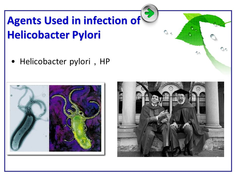 Agents Used in infection of Helicobacter Pylori