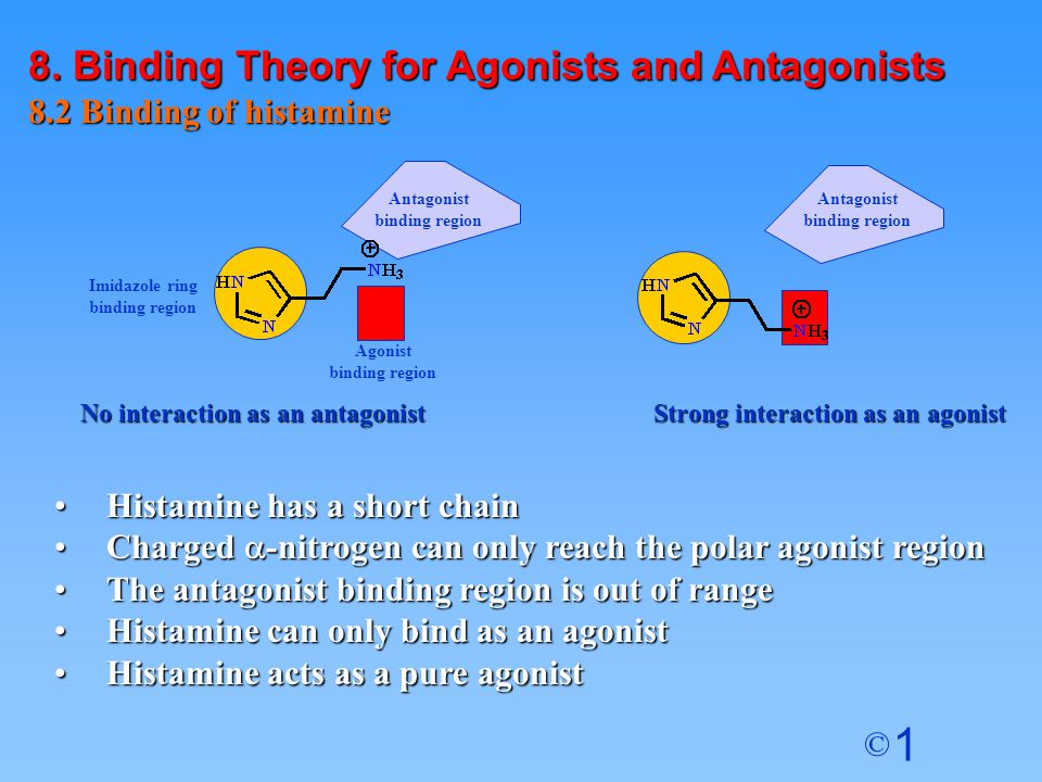 8. Binding Theory for Agonists and Antagonists