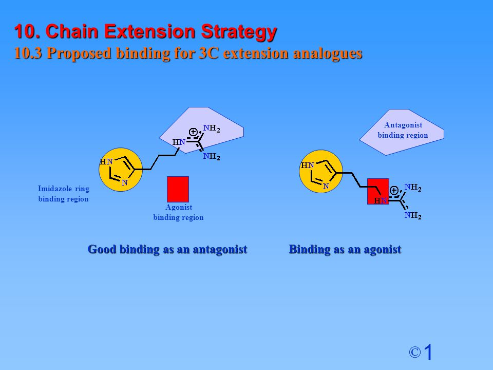 10. Chain Extension Strategy