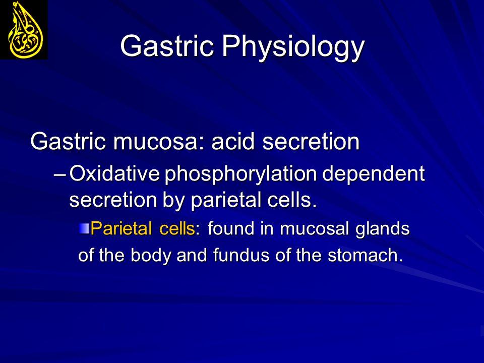 Gastric Physiology Gastric mucosa: acid secretion