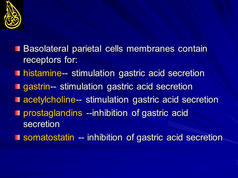 Basolateral parietal cells membranes contain receptors for: