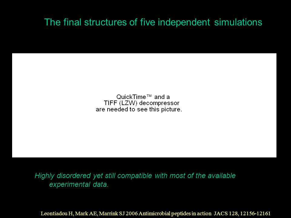 The final structures of five independent simulations