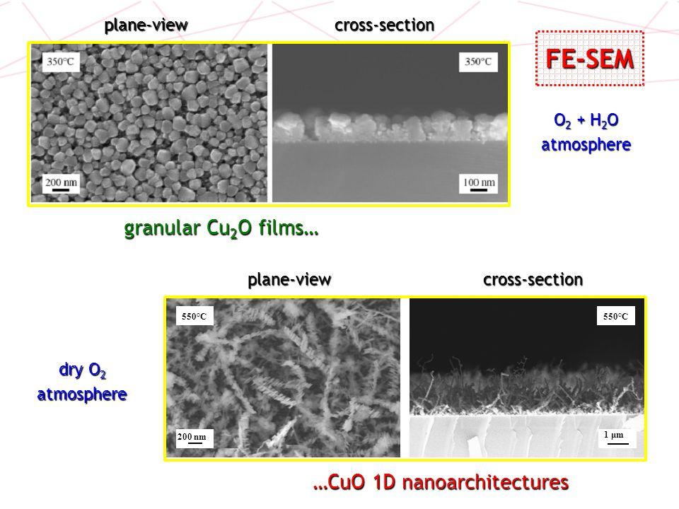 …CuO 1D nanoarchitectures