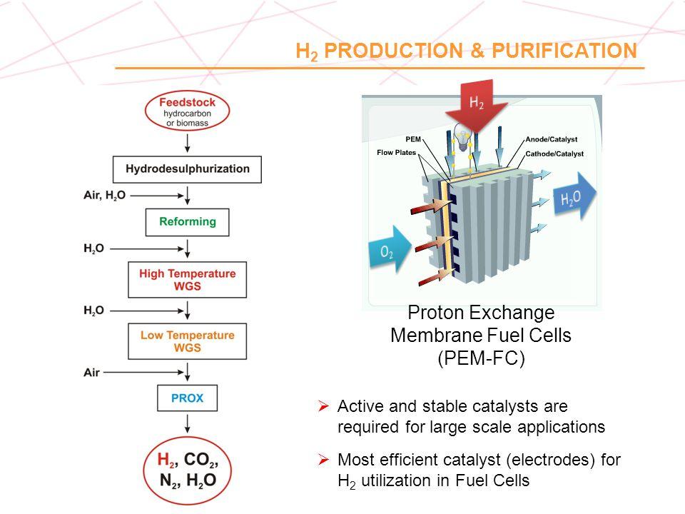 Proton Exchange Membrane Fuel Cells (PEM-FC)