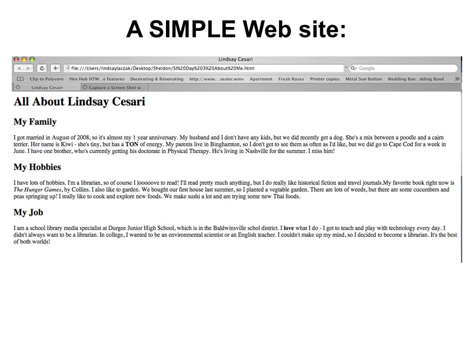 A SIMPLE Web site: This is what a super simple website looks like when displayed in I.E.
