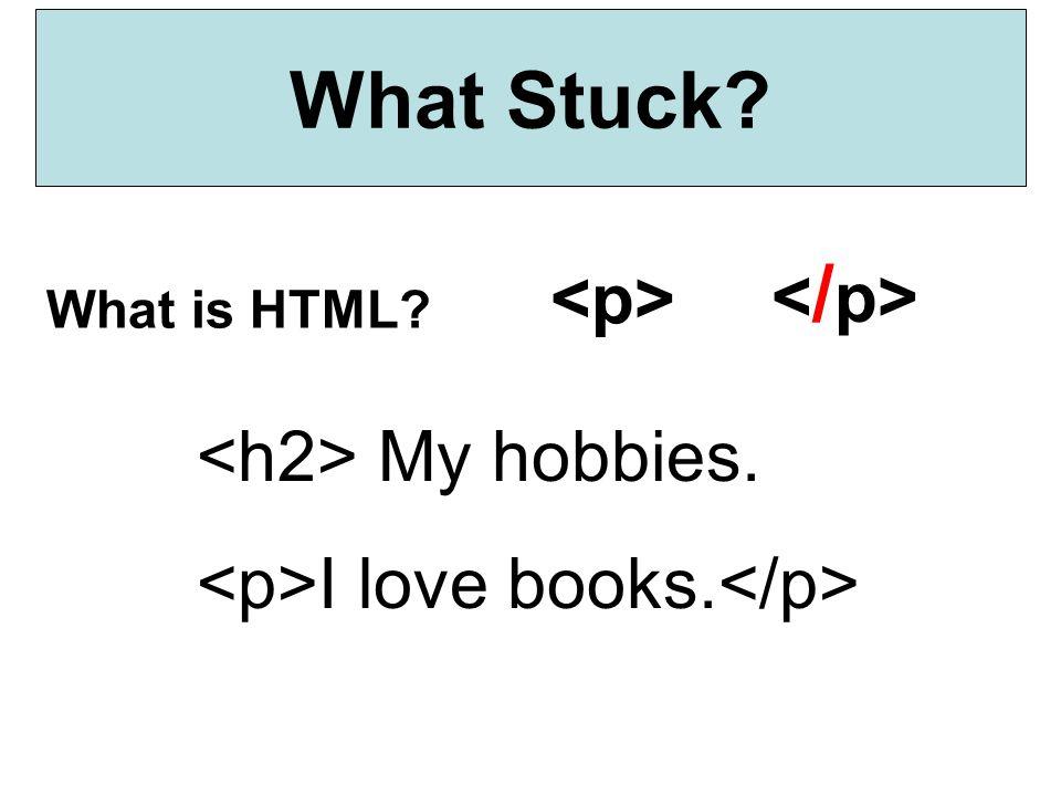 What Stuck </p> <p> <h2> My hobbies.