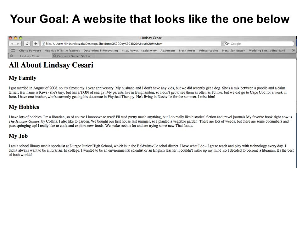 Your Goal: A website that looks like the one below