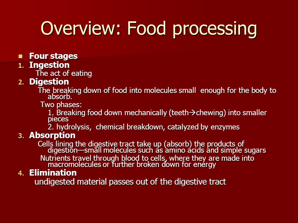 Overview: Food processing