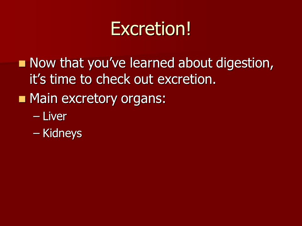 Excretion! Now that you've learned about digestion, it's time to check out excretion. Main excretory organs:
