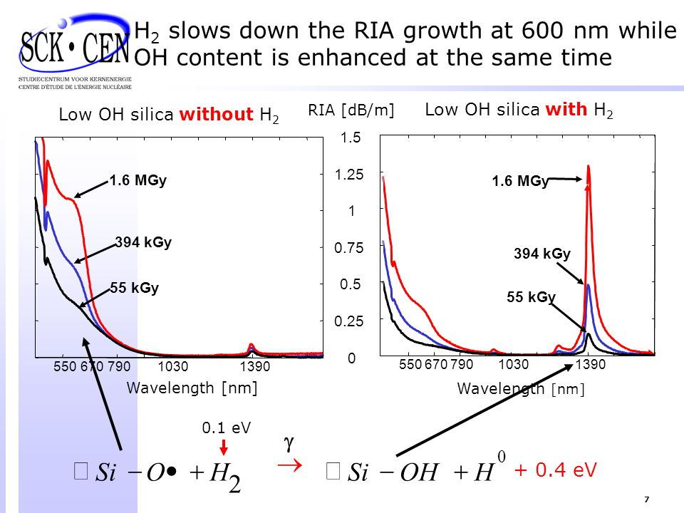 H2 slows down the RIA growth at 600 nm while OH content is enhanced at the same time