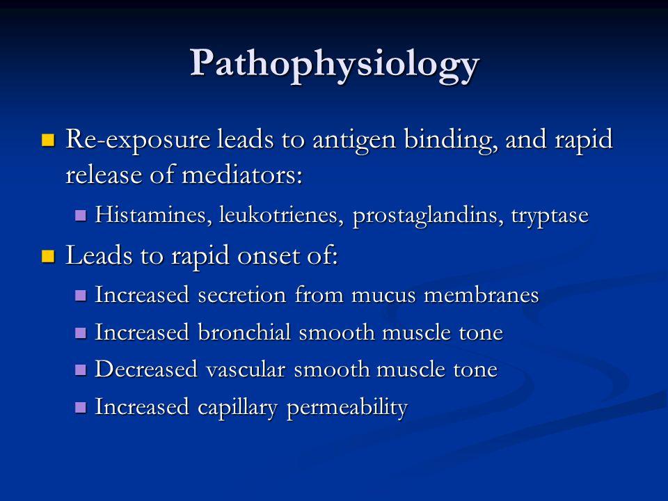 Pathophysiology Re-exposure leads to antigen binding, and rapid release of mediators: Histamines, leukotrienes, prostaglandins, tryptase.