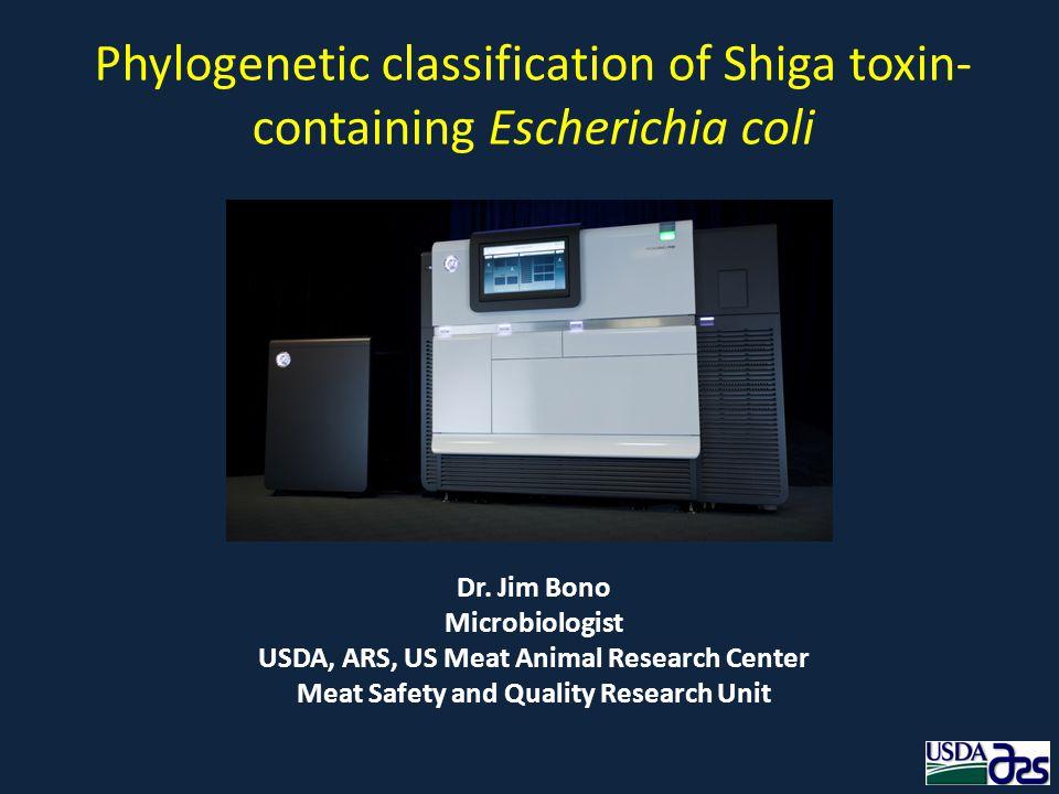 Phylogenetic classification of Shiga toxin-containing Escherichia coli