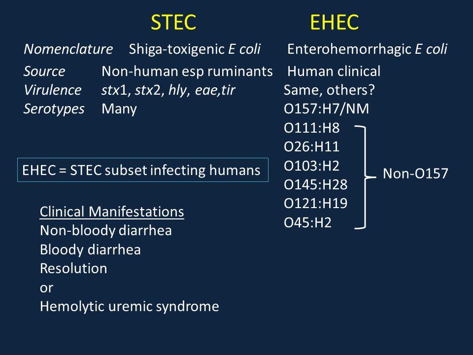 STEC EHEC Nomenclature Shiga-toxigenic E coli Enterohemorrhagic E coli