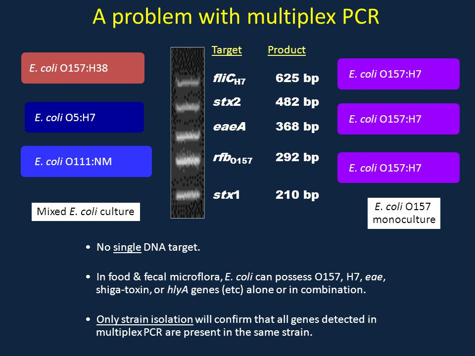 A problem with multiplex PCR