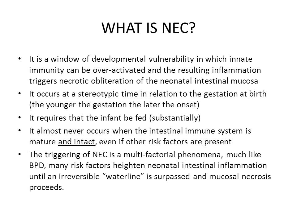 WHAT IS NEC