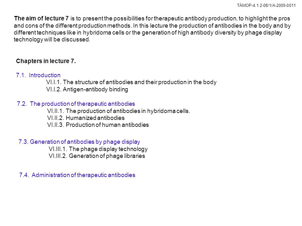 VI.I.1. The structure of antibodies and their production in the body