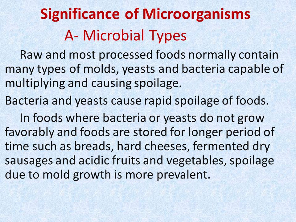 Significance of Microorganisms