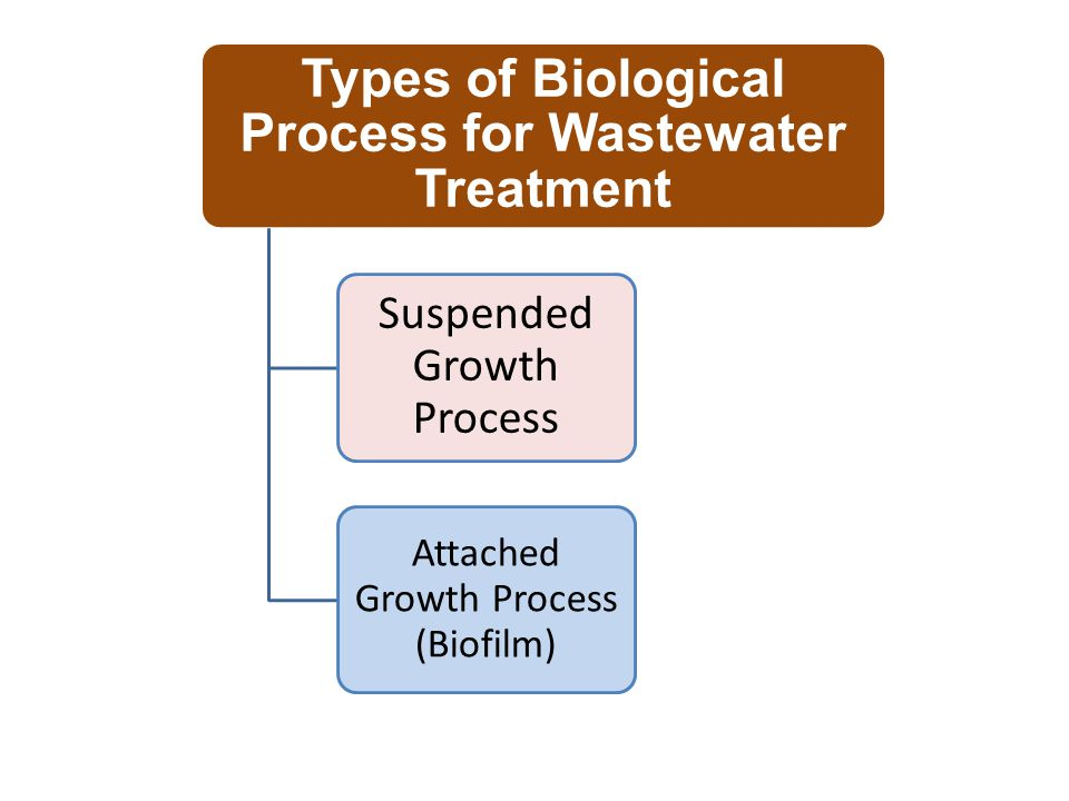 Types of Biological Process for Wastewater Treatment