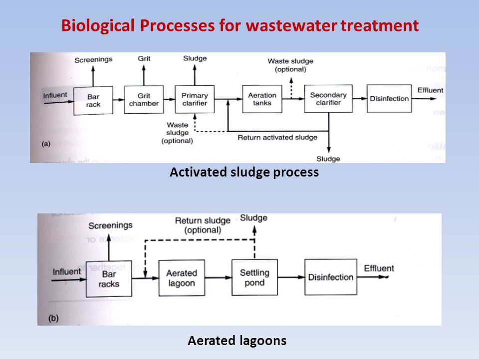 Biological Processes for wastewater treatment