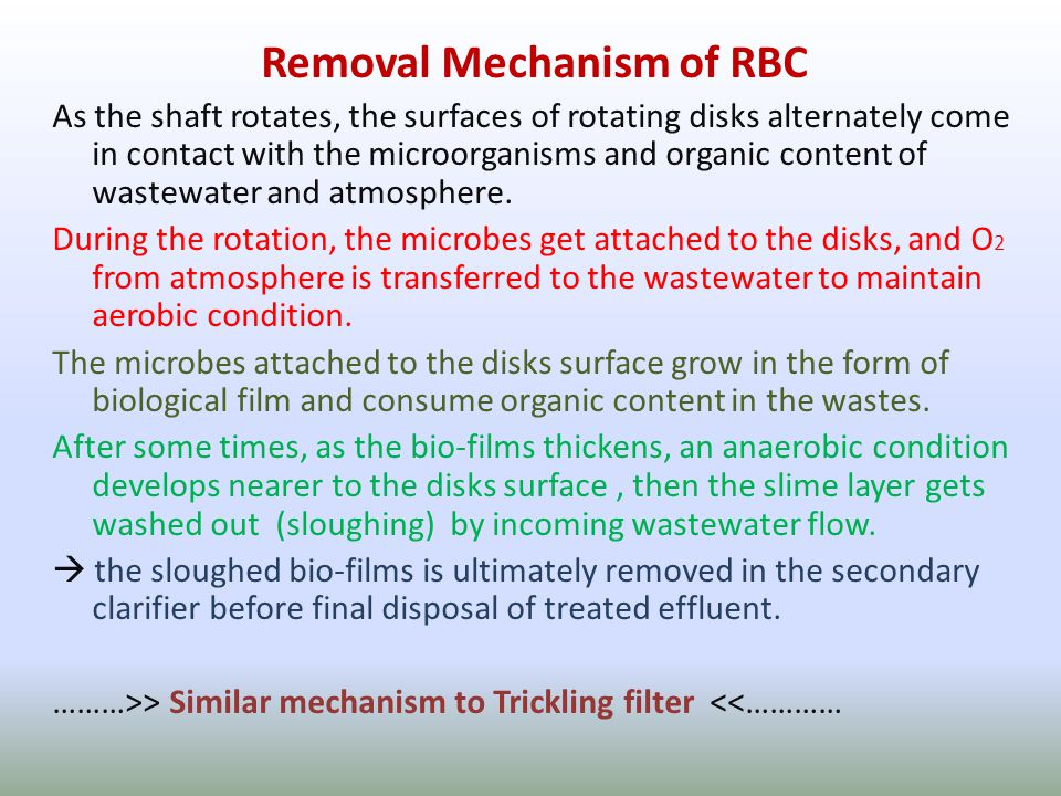 Removal Mechanism of RBC