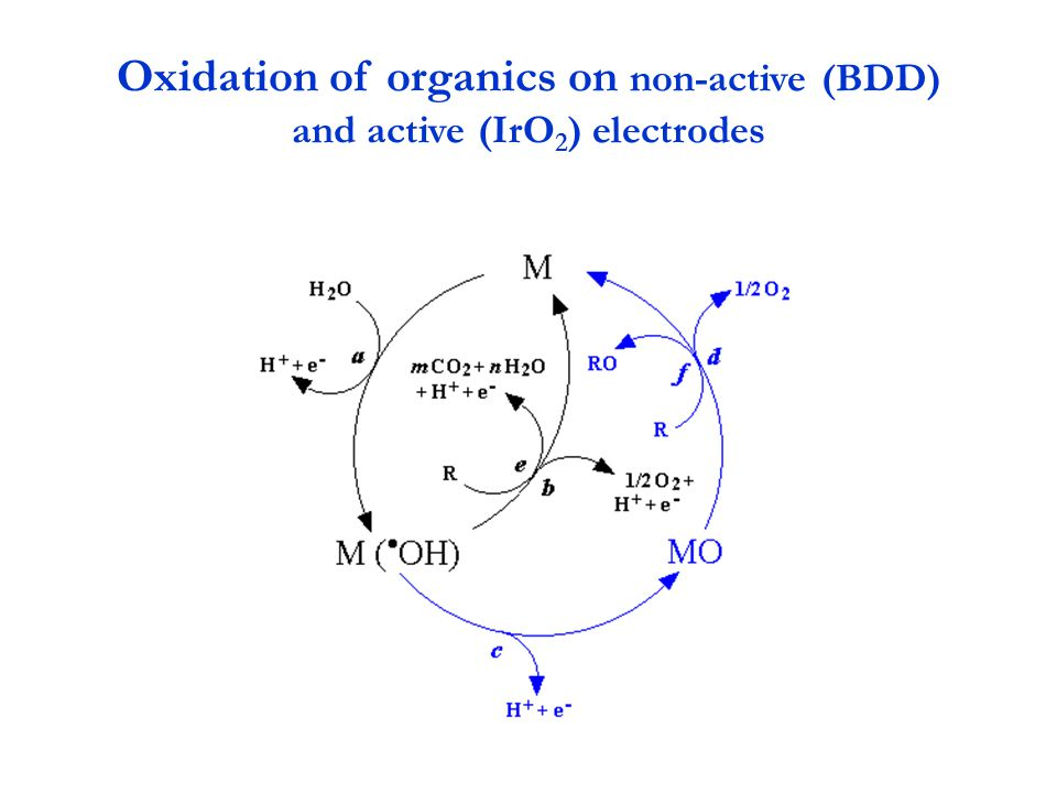 Oxidation of organics on non-active (BDD) and active (IrO2) electrodes