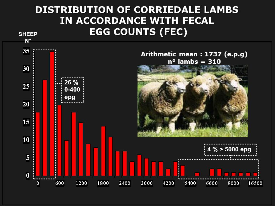 DISTRIBUTION OF CORRIEDALE LAMBS IN ACCORDANCE WITH FECAL