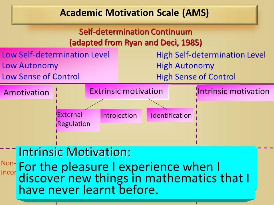 Academic Motivation Scale (AMS)