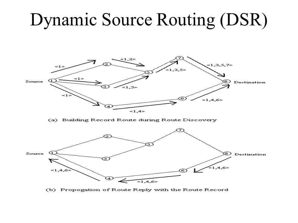 dynamic source routing Abstract the dynamic source routing (dsr) protocol is a simple and robust  routing protocol designed for use in multi-hop wireless ad-hoc networks of mobile .
