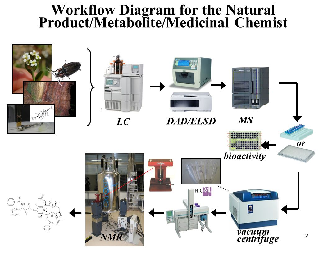 Workflow Diagram for the Natural Product/Metabolite/Medicinal Chemist