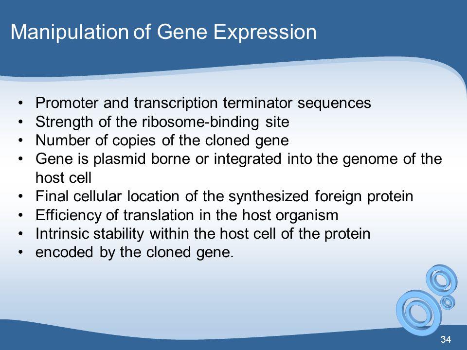 Manipulation of Gene Expression