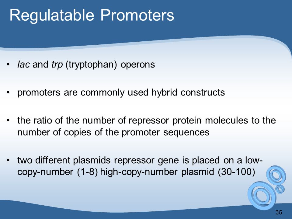 Regulatable Promoters