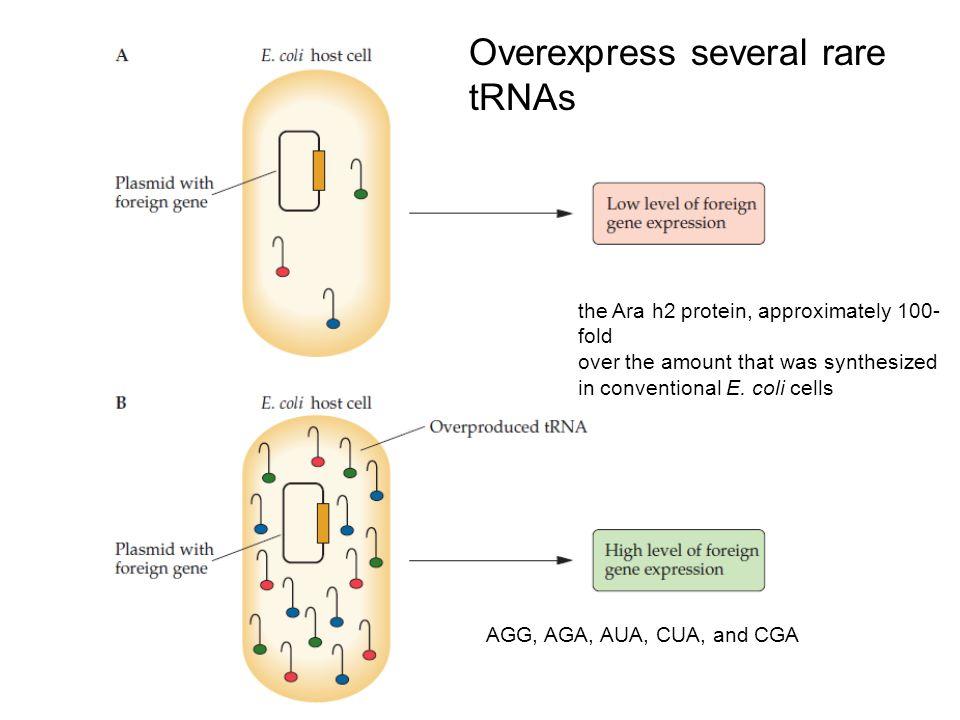 Overexpress several rare tRNAs
