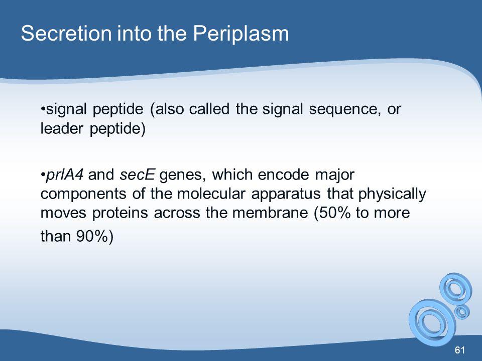 Secretion into the Periplasm