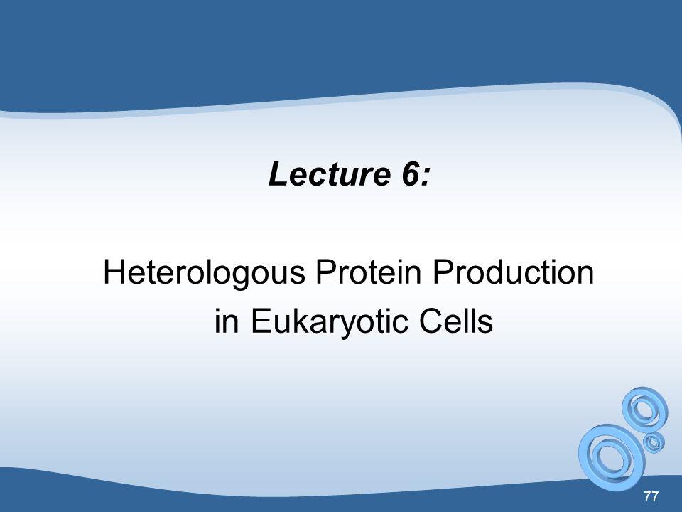 Heterologous Protein Production