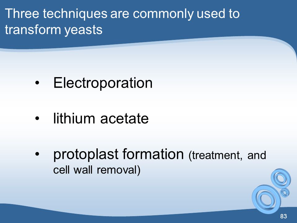 protoplast formation (treatment, and cell wall removal)