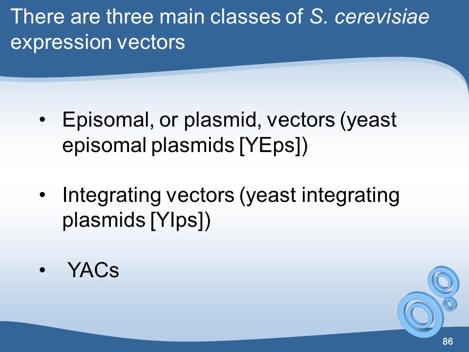There are three main classes of S. cerevisiae expression vectors