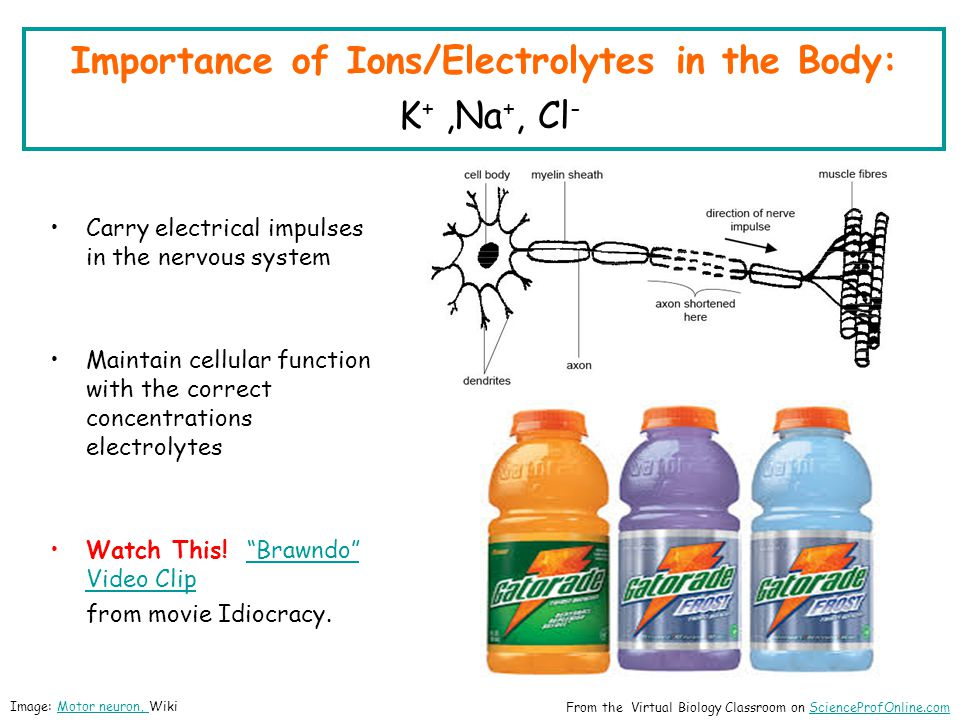 Importance of Ions/Electrolytes in the Body: K+ ,Na+, Cl-