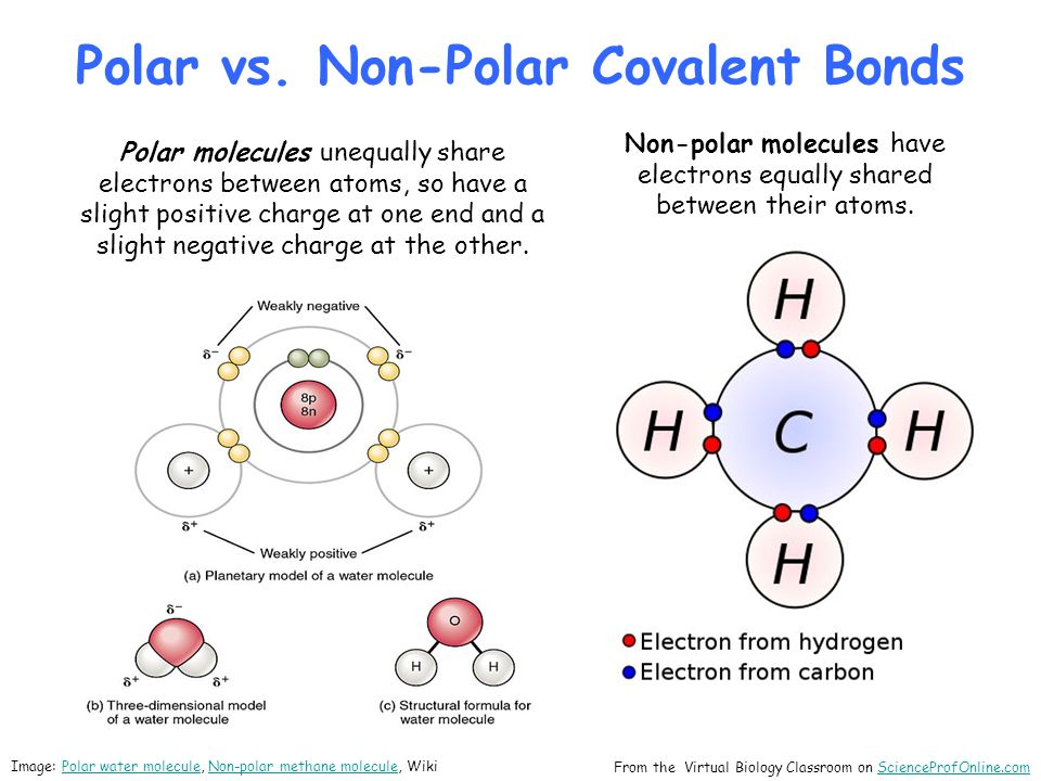 Polar vs. Non-Polar Covalent Bonds