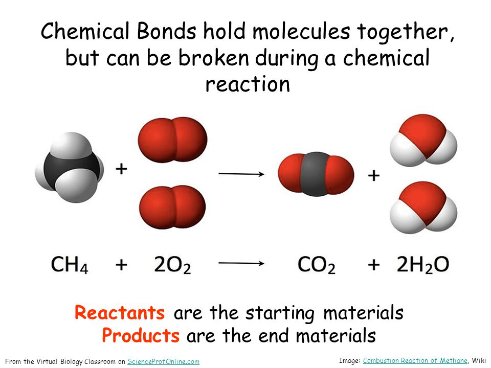Chemical Bonds hold molecules together, but can be broken during a chemical reaction