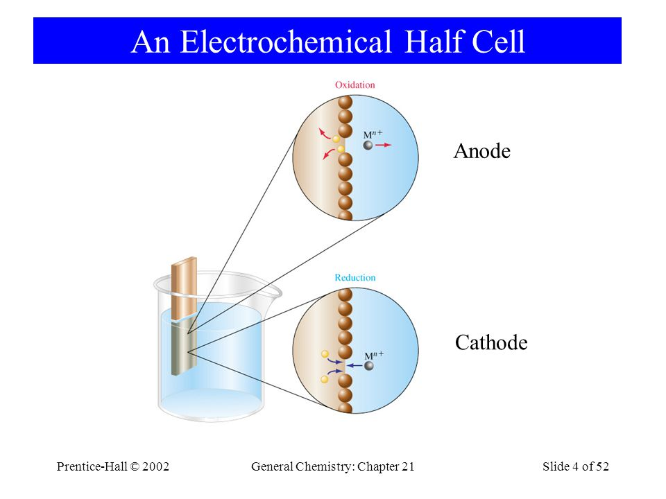 An Electrochemical Half Cell