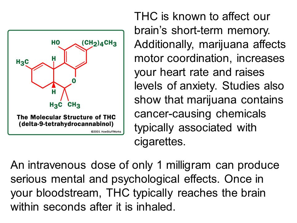 THC is known to affect our brain's short-term memory