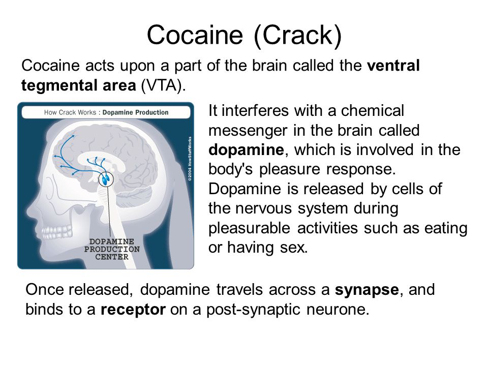 Cocaine (Crack) Cocaine acts upon a part of the brain called the ventral tegmental area (VTA).