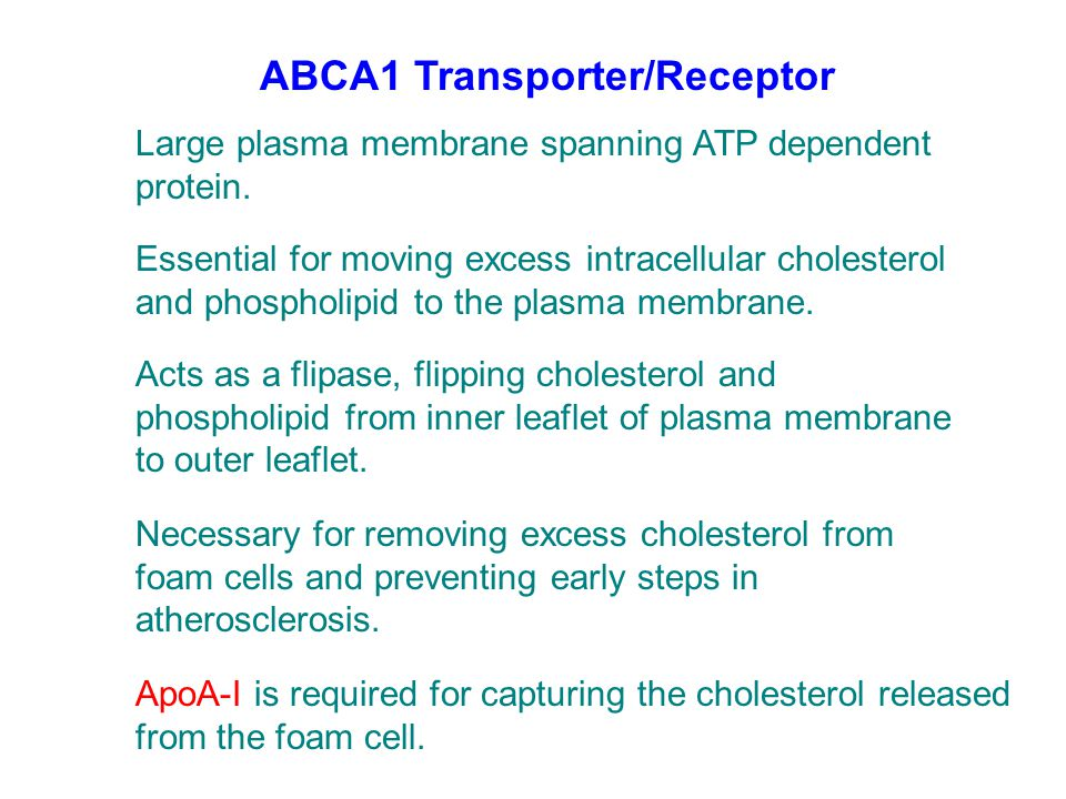 ABCA1 Transporter/Receptor