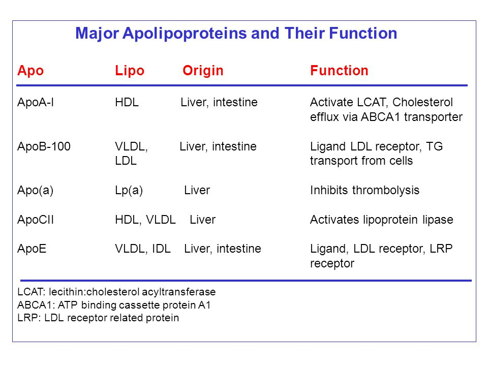 Major Apolipoproteins and Their Function