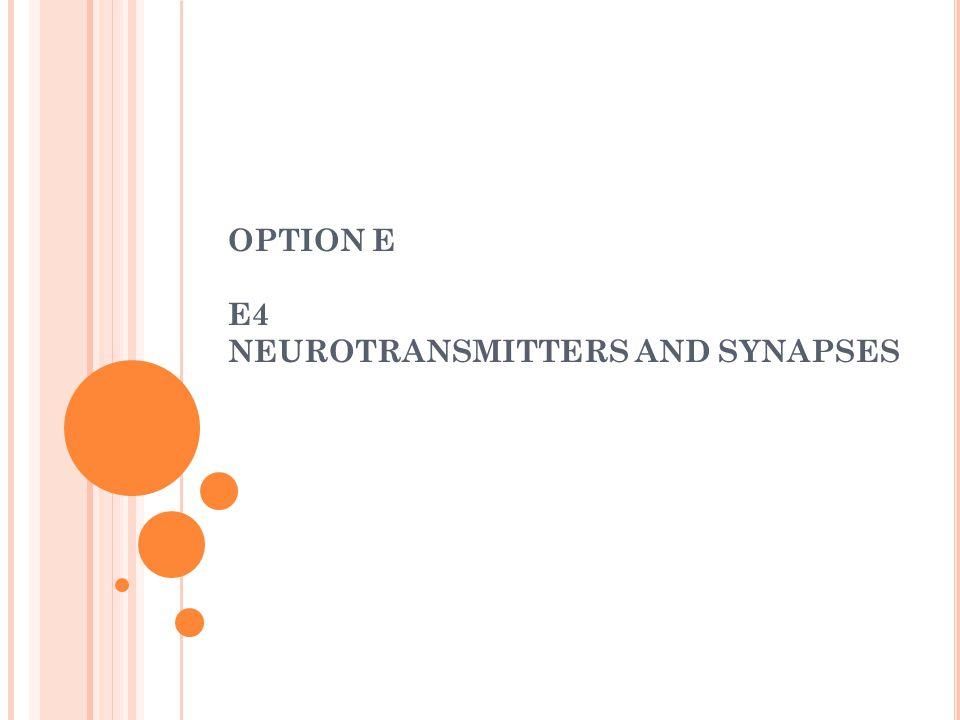 OPTION E E4 NEUROTRANSMITTERS AND SYNAPSES