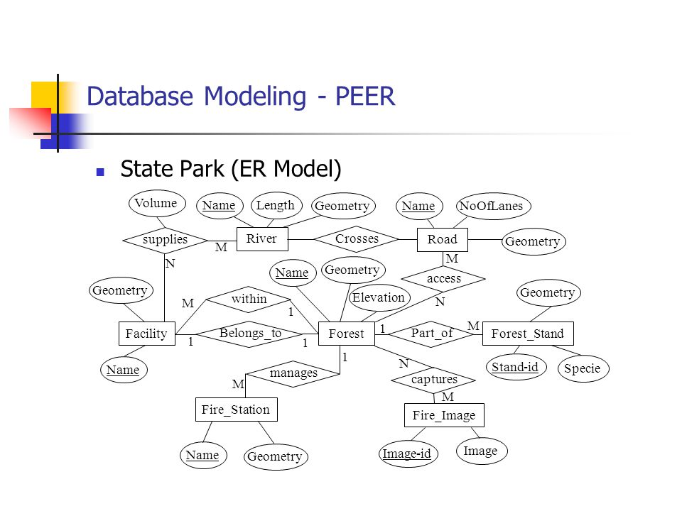 Database Modeling - PEER